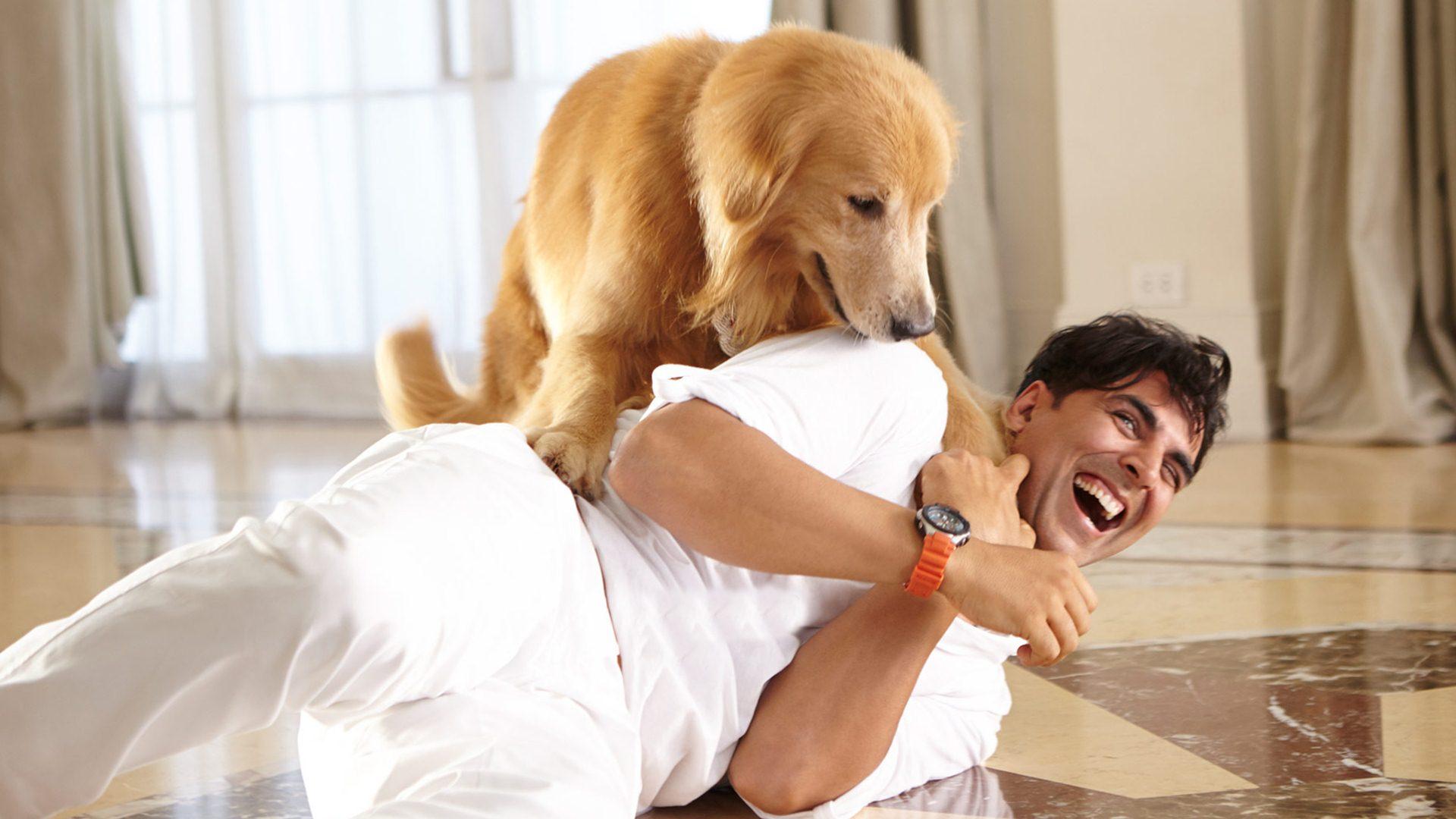 Akshay Kumar and the wonder dog