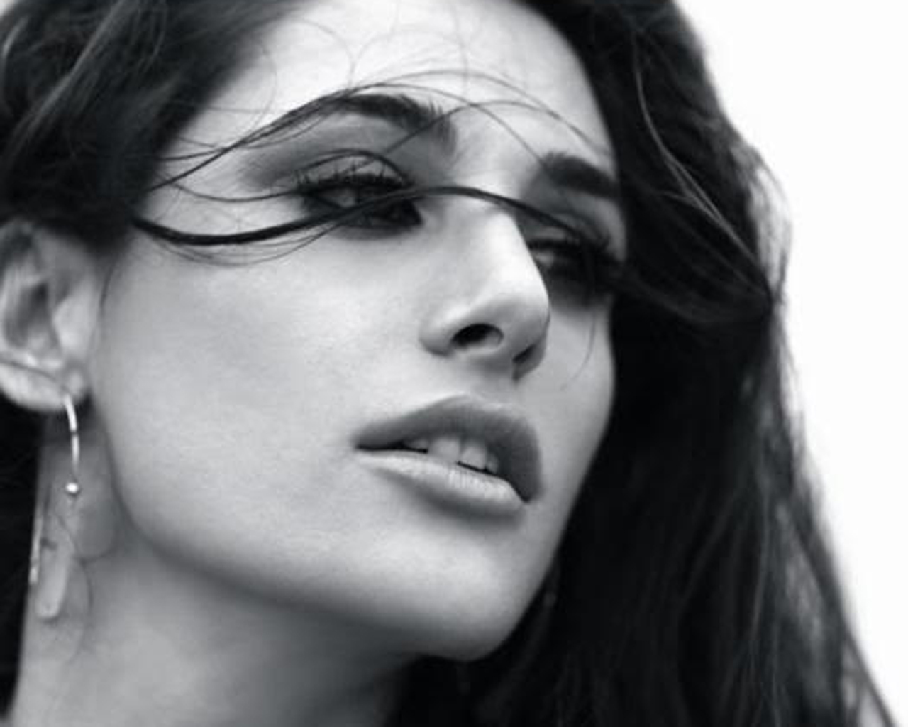 Nargis Fakhri dropped from Shaukeen