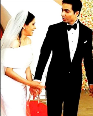 Asin & Rahul Sharma's Lavish Wedding