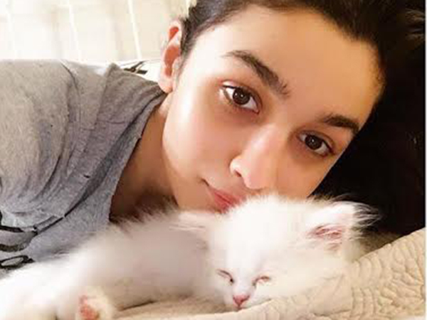 Adorable! Check out who has taken over Alia Bhatt's Instagram account!