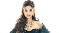 Patralekha turns down a film opposite Bobby Deol?