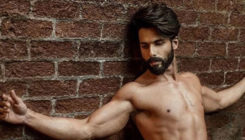 After Padmaavat, Shahid Kapoor to star in a sports film?