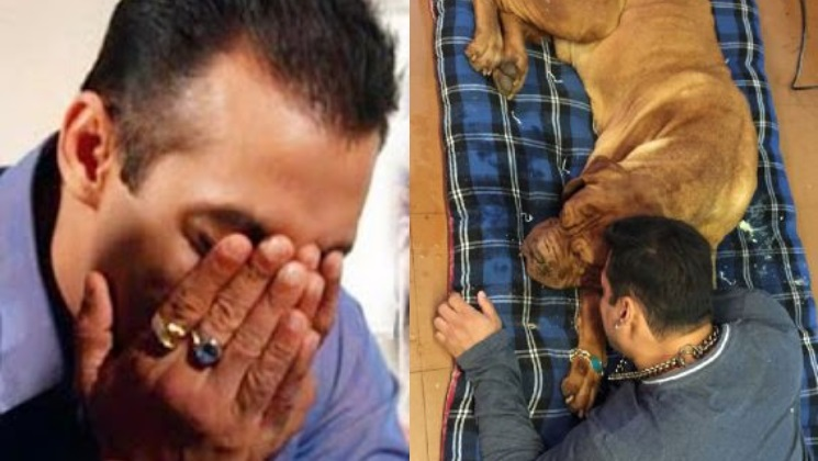 Flipboard Salman Khan Gets Emotional As His Pet Dog My Love Passes Away-6743