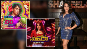 In Pics: Richa Chadha poses in 12 avatars of 'Shakeela' in its calendar