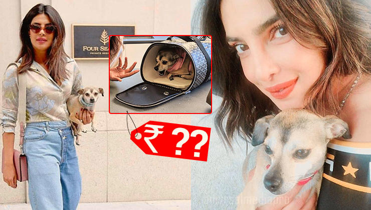 Priyanka Chopra gifts her dog Diana a super expensive travel bag