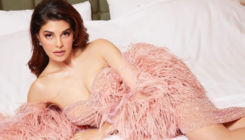 Say what! Jacqueline Fernandez crosses 30 million followers on Instagram; makes her account private