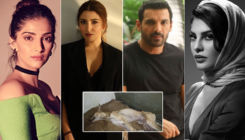 Sonam Kapoor files FIR; Anushka, John, Jacqueline jump in to demand justice for cruelty on a street dog