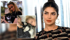 Priyanka Chopra is all praise for Sophie Turner and Joe Jonas' tattoos in late dog's memory