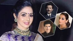 Sridevi Birth Anniversary: Anil Kapoor, Vidya Balan and Manish Malhotra remember the legendary actress