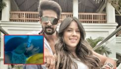 Ravi Dubey on doing intimate scenes with Nia Sharma in 'Jamai 2.0': It was tough and I was so nervous