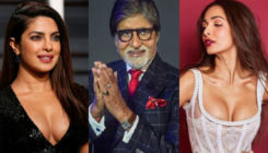 Diwali Wishes: Priyanka Chopra to Amitabh Bachchan to Malaika Arora - Bollywood celebs share wishes on Deepavali