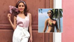 Nushrat Bharucha sets the temperature soaring with her bikini-clad pictures from Thailand