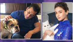 Salman Khan to Alia Bhatt - Here are 7 B-Town celebs who have the most adorable pets