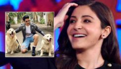 Anushka Sharma trolls Varun Dhawan like a boss lady for wearing ripped shorts