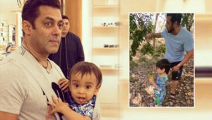 Salman Khan and Ahil Sharma Fruit Picking