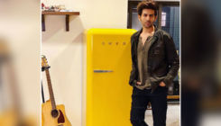 Kartik Aaryan is selling ice cream for Rs 2 lakhs per scoop! You'll be surprised the know the ice cream's speciality