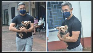Aamir Khan's grey hair grabs attention as he steps out with his pet - view pics