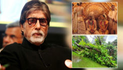 Amitabh Bachchan shares story of the 43-year-old Gulmohar tree under which Abhishek-Aishwarya tied the knot