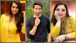 TV stars open up on coping with massive Diwali cleaning without house helpsamidst pandemic