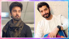 Sudhanshu Pandey to Sharad Malhotra - TV stars reveal how facial hair changes audience's perception of them