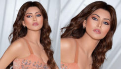 Urvashi Rautela charges THIS whopping amount for New Year's appearance