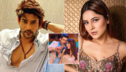 Shehnaaz Gill REVEALS the name and details of her upcoming music video with Sidharth Shukla